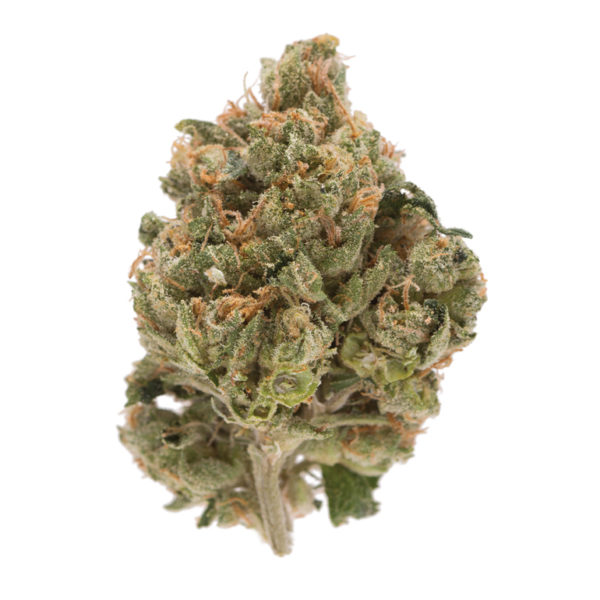 Holy Grail Kush for sale USA, Canada