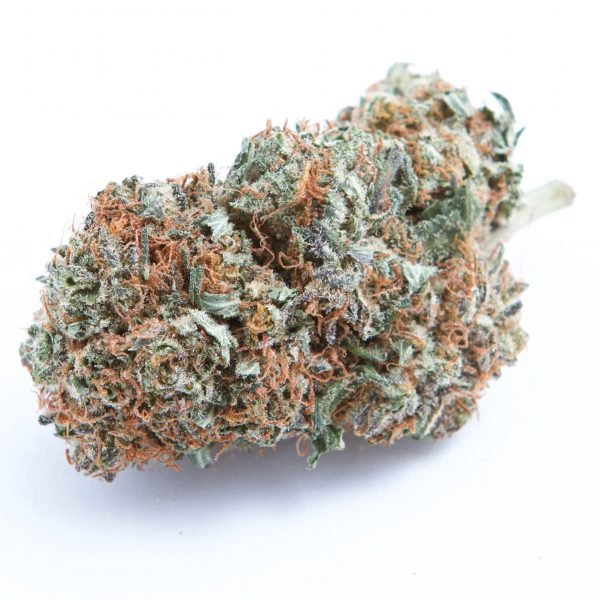Purple Kush for sale Online USA, Canada