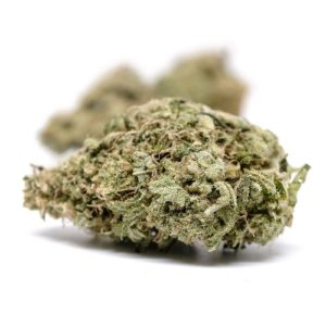 buy White Widow Strain online USA, Canada
