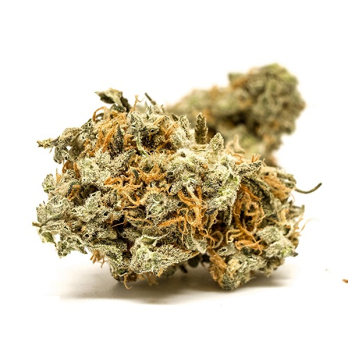 Blue Cheese Kush For Sale online