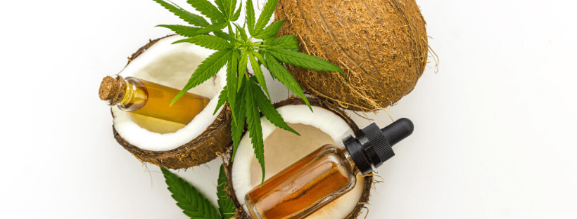 How-to-Make-Cannabis-Coconut-Oil